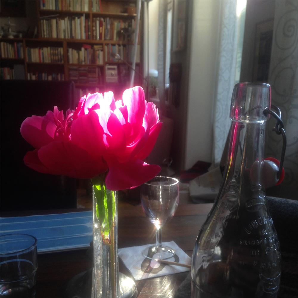 Ljuset leker på dukat bord