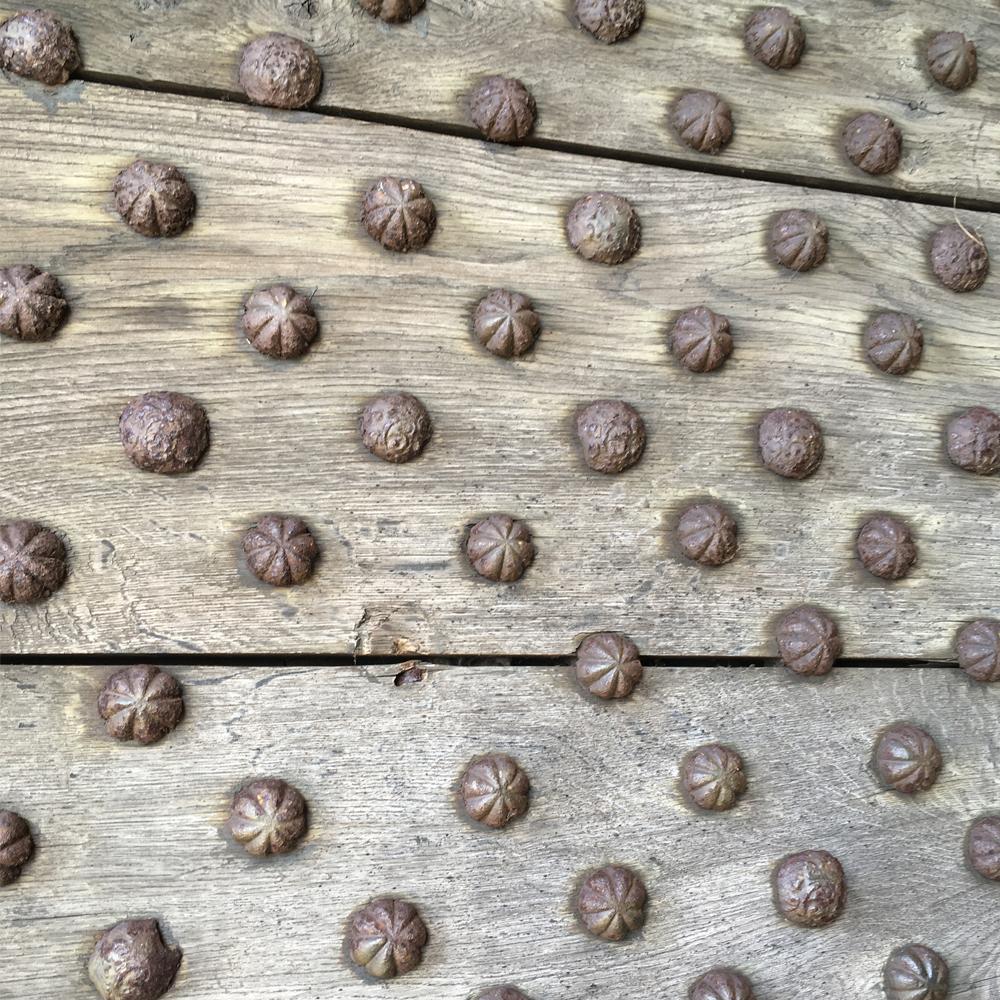 vackra spikhuvuden på reel brädvägg